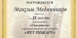 Медянников Максим