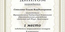 1 место пед проект Соколова