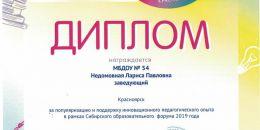 Дипломы СОФ 2019 Недомовная