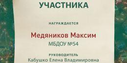 МБДОУ №54