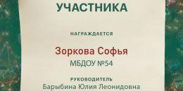 Зоркова Софья