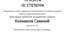 Колмаков Савелий ДИПЛОМ