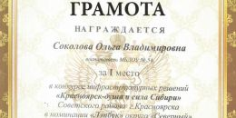 Соколова Ольга Владимировна 1 место Лепбук